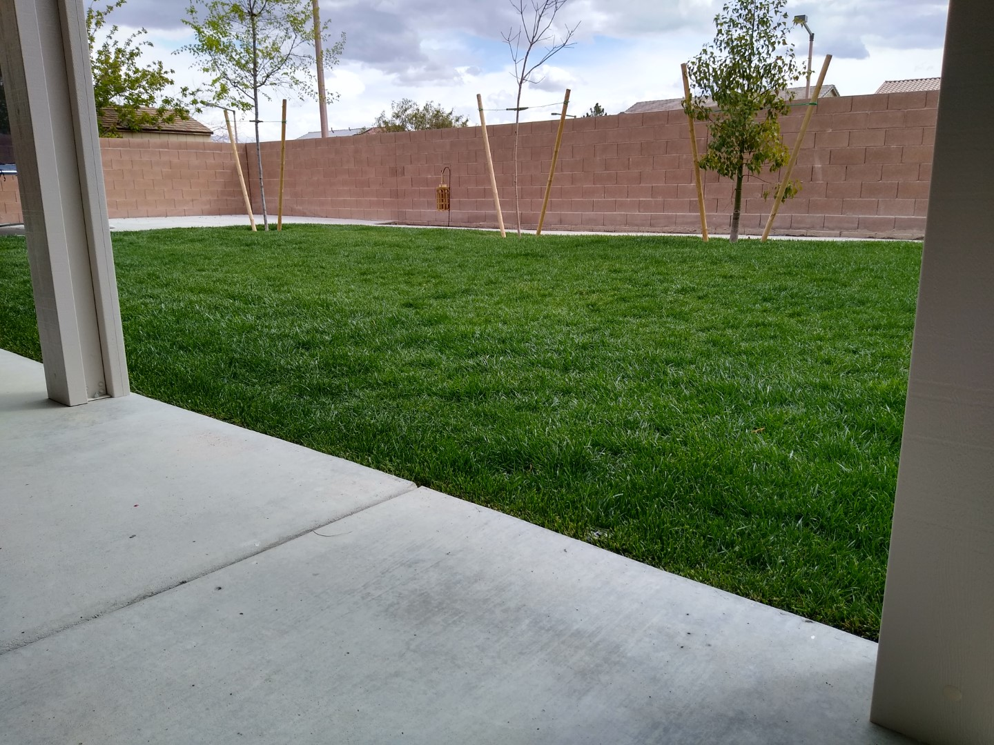 Landscaping Company Real Grass Sod Installation